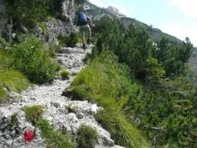 11 mughi sentiero re di sassonia