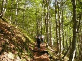 2 sentiero re di sassonia